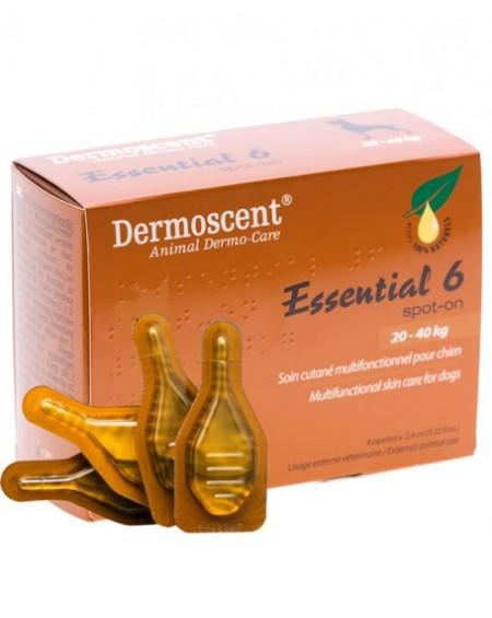 Dermoscent essential 6 αμπούλες