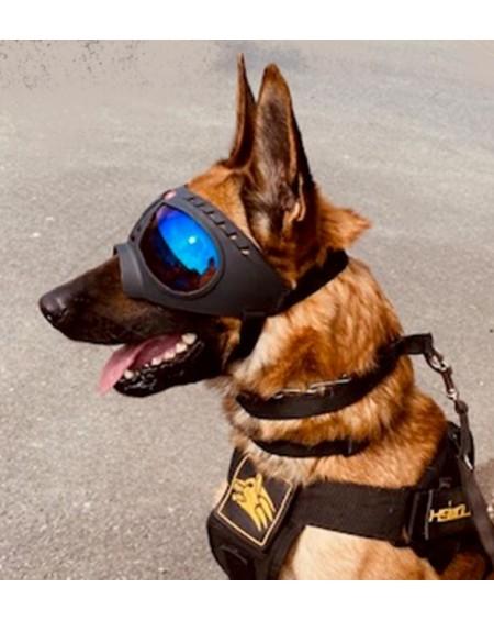 K9 Tactical Goggles