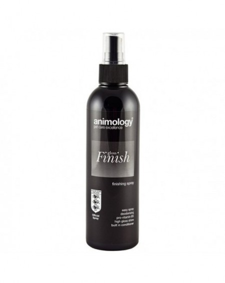 GLOSS FINISH SPRAY 250ml