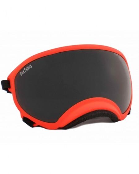 Rex Specs Goggles Small