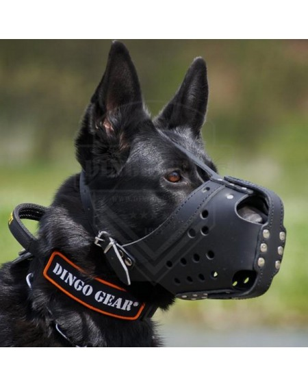 Reinforced leather dog muzzle for service, training and defense